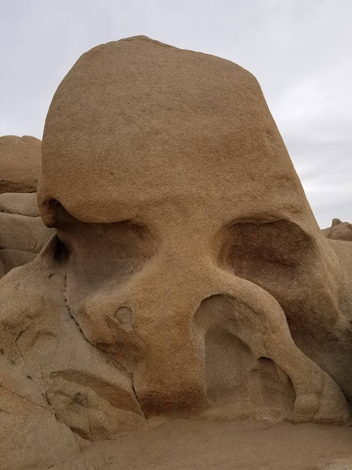 Joshua Tree And Pioneertown Tips Fun Facts And Things To Do